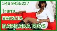 Barbara Rios