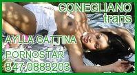 Aylla Gattina