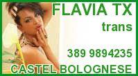 Flavia Tx