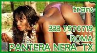 Pantera Nera  Tx